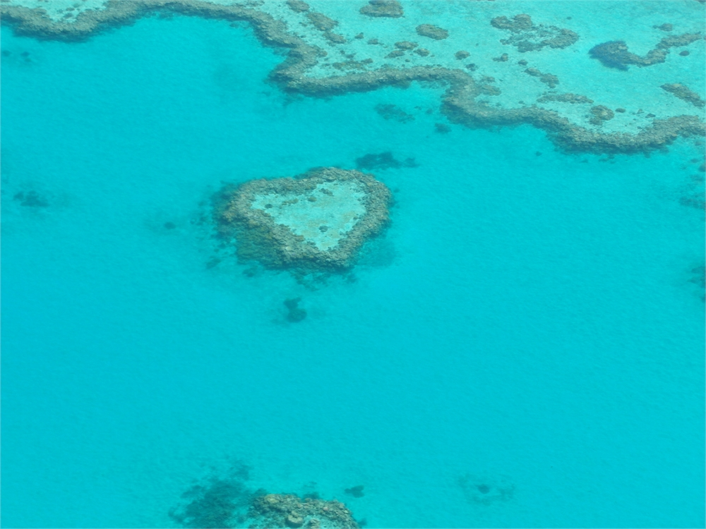 whitsunday-islands-flug-korallenriff-hardy- reef