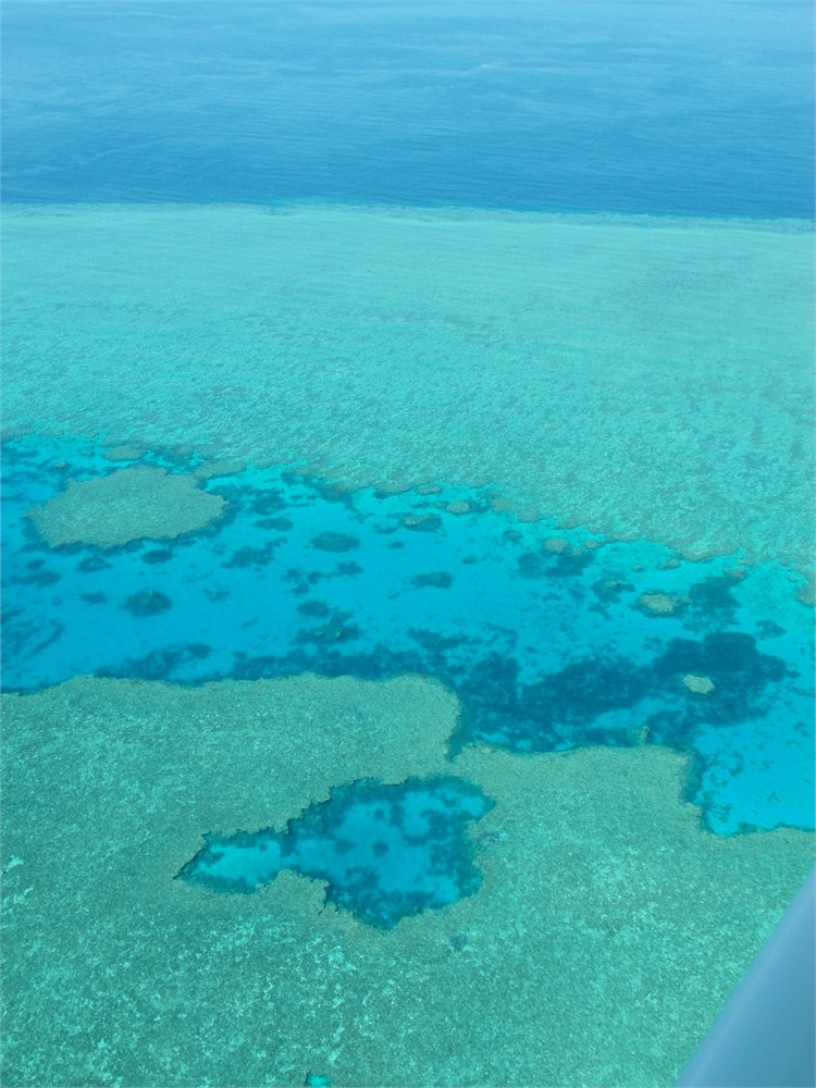 whitsunday-islands-flug-korallenriff_0495