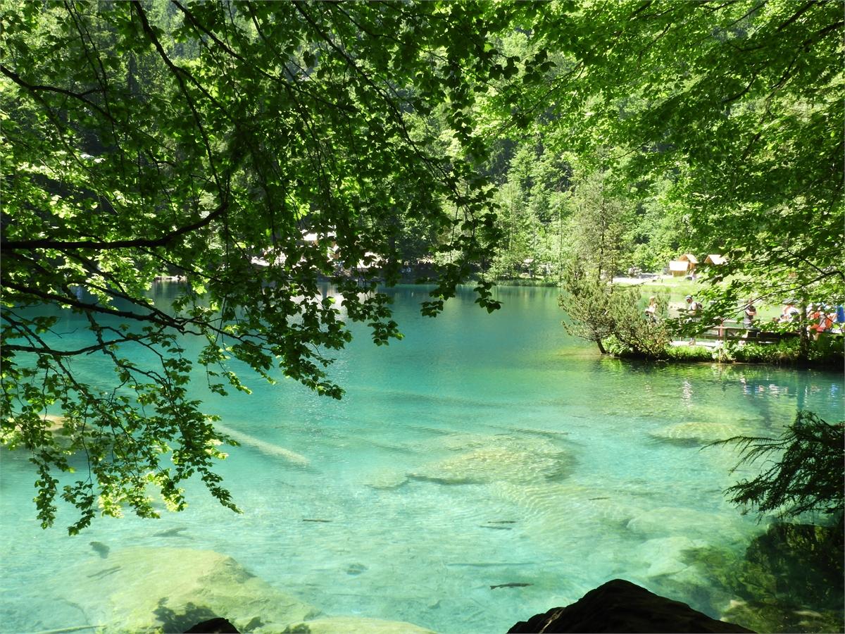 Blausee-Kandersteg-0333