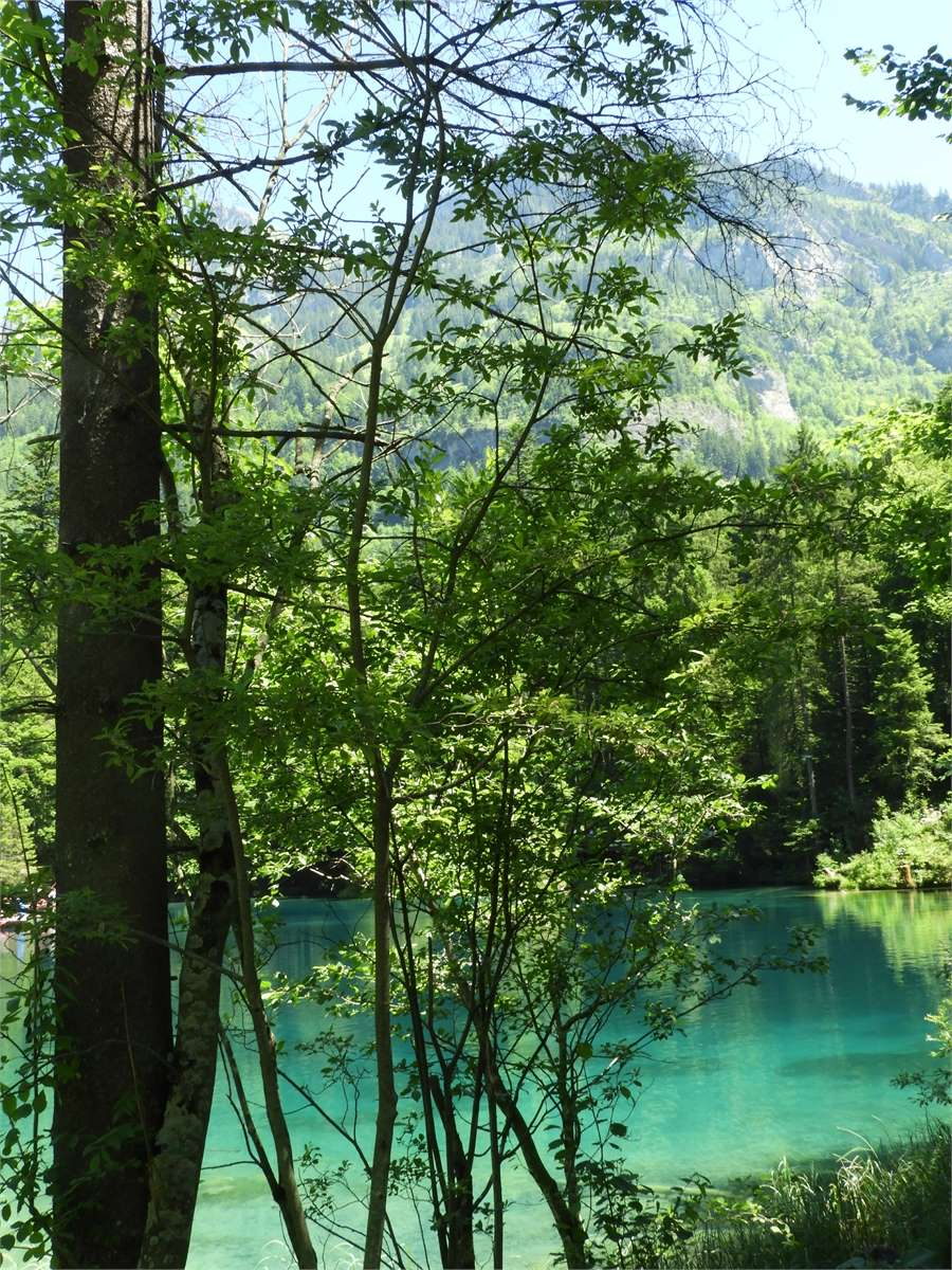 Blausee-Kandersteg-0355